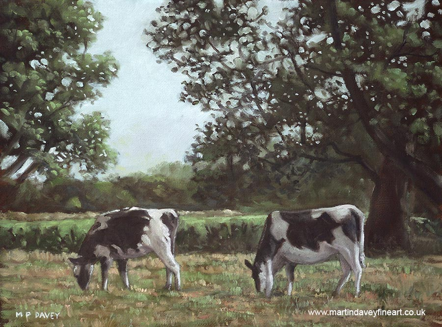 two friesan cows in field with trees in throop dorset oil painting