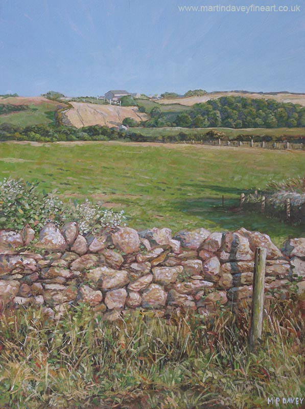 drystone wall in devon countryside painting