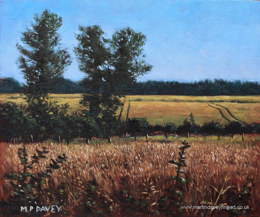 dorset_countryside_golden_fields_in_summer oil painting