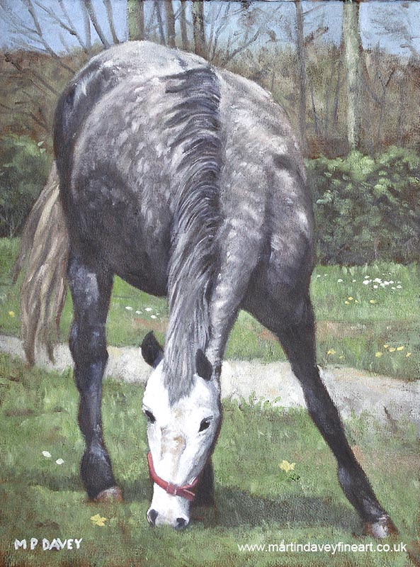 grey spotty horse standing in field oil painting