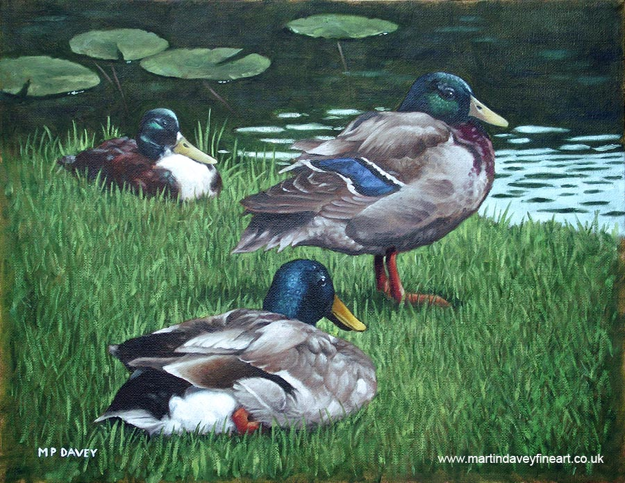group of mallard ducks on river bank oil painting