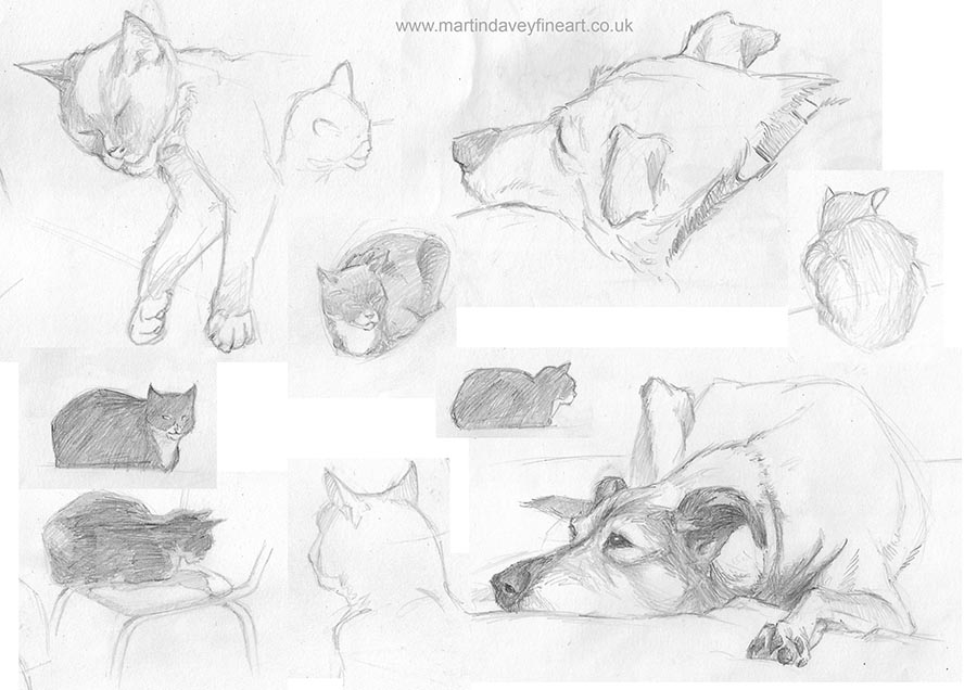 sketches of dog and cat
