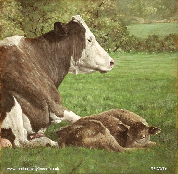 cow and calf in field oil painting
