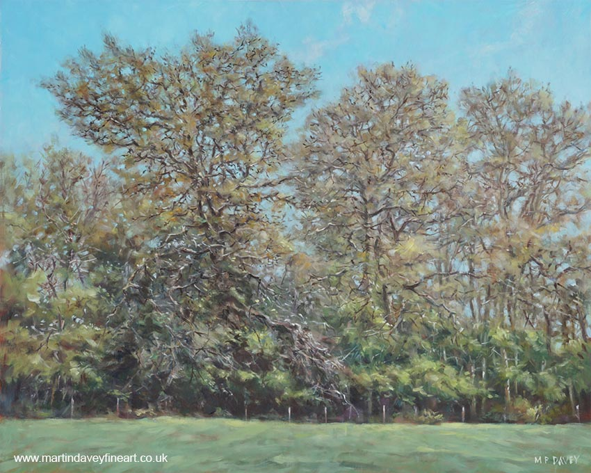 line up of trees during autumn in Hampshire  oil painting